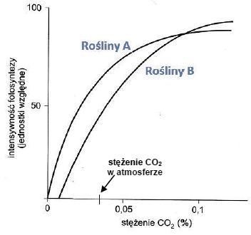 Wpływ stężenia dwutlenku węgla na intensywność procesu fotosyntezy.