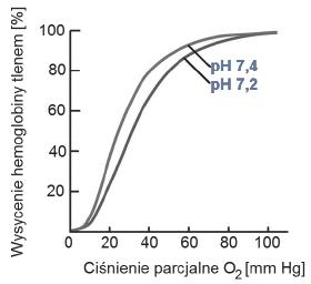 Wpływ powinowactwa hemoglobiny do tlenu w zalezności od wartości pH osocza.