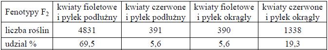 Rodzaje fenotypów i ich stosunek liczbowy w przypadku alleli sprzężonych.