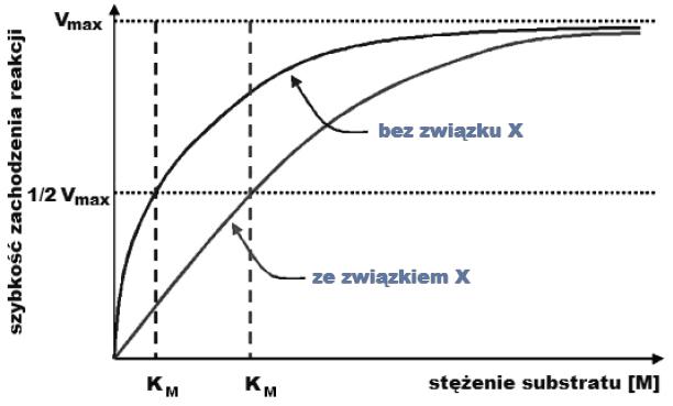 Zależność szybkości reakcji od stężenia substratu.