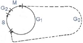 Cykl komórkowy. Przejście komórek do fazy G0