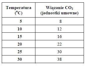 Zależność temparatury powietrza na proces fotosyntezy