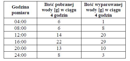 Przykład bilansu wodnego rośliny.