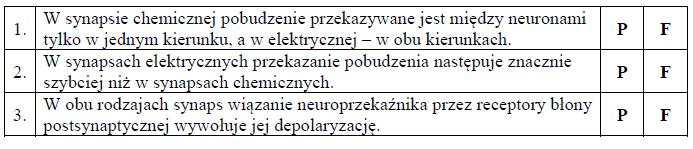 Synapsa chemiczna oraz synapsa elektryczna.