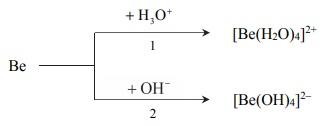Tworzenie się jonów kompleksowych berylu.