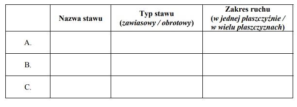 Typy stawów w ciele człowieka.