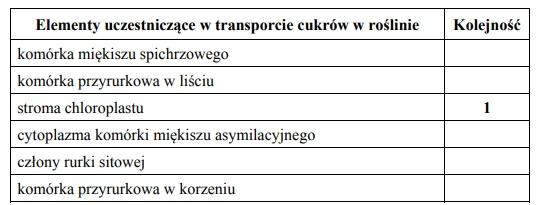 Transport asymilatów w roślinie.