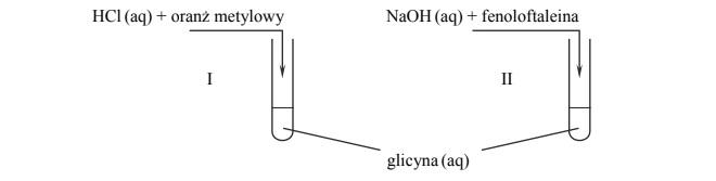 Badanie właściwości glicyny.