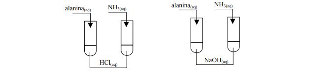 Właściwości chemiczne amoniaku i alaniny.