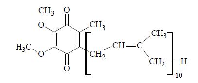 Ubichinon jako niezbędny element łańcucha oddechowego.