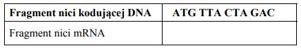 Określanie kolejności aminokwasów w białku.