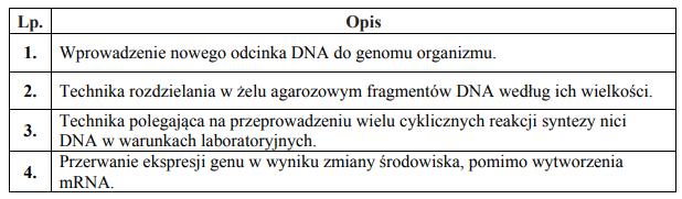 Techniki inżynierii genetycznej.